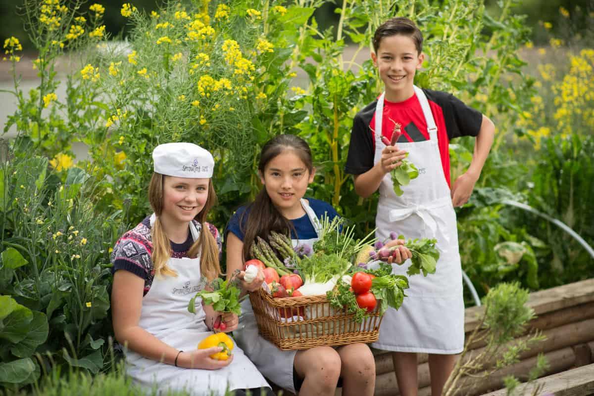 Food garden awards