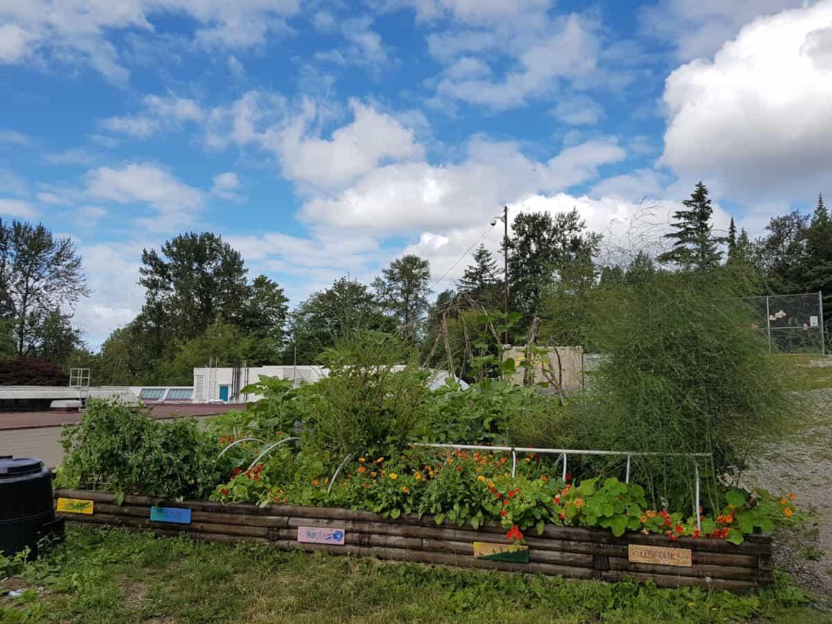 Achievements of editable garden