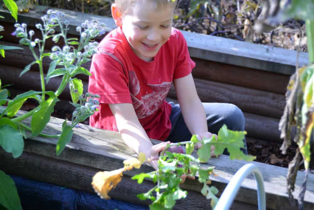 Boy sitting in the school garden
